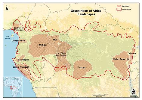 Congo Basin On Map Of Africa.Sustainable Protected Areas Wwf