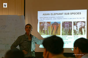 WWF-Cambodia Conducted the First Training on Elephants to Community Rangers in Eastern Plains Landscape