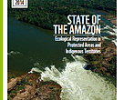 State of the Amazon: Ecological Representation in Protected Areas and Indigenous Territories