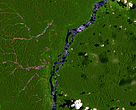 Monitoring the impact of gold mining on forest cover and freshwater in the Guiana Shield