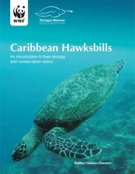 Caribbean Hawksbills - Biology and Conservation Status.  	© WWF