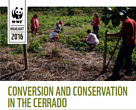 Conversion and conservation in the Cerrado