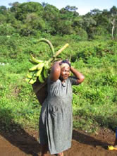 Home with a juicy plantation harvest near Nyassoso village / ©: WWF-Canon / WWF-CARPO / Peter Ngea