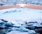 Climate change is hitting the Arctic faster and harder than previously thought, according to a new WWF report. ©WWF