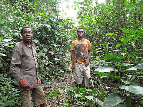 Community Based Natural Resource Management Congo