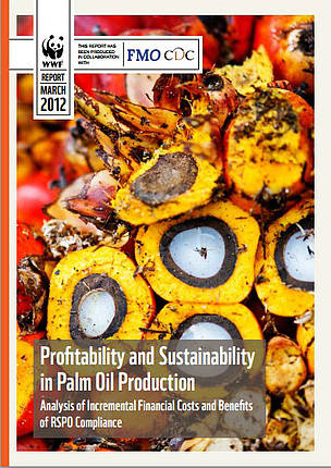 REPORT: Profitability and Sustainability in Palm Oil Production