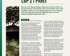 WWF FCP's COP21 Expectations Paper