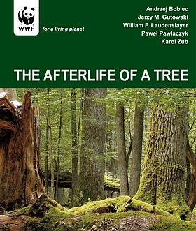 The afterlife of a tree  	© WWF
