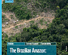 "Coverpage of the publication ""Brazilian Amazon:  challenges to an effective policy to curb deforestation"""