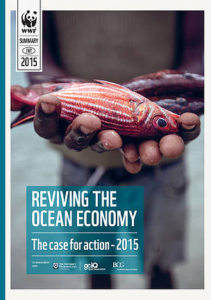 REPORT: Reviving the Ocean Economy: The case for action - 2015
