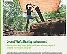 Decent Work: Healthy Environment