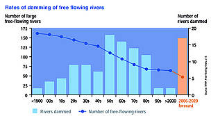 Rates of damming of free flowing rivers.  	© WWF