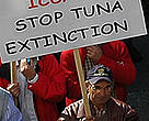 A man protests against the overfishing of Atlantic bluefin tuna in the Mediterranean.