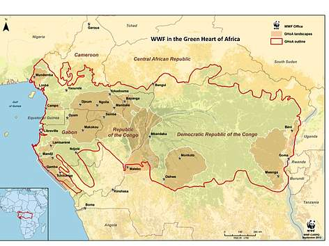Congo Basin On Map Of Africa.Wwf In The Congo Basin Wwf