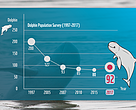 Mekong Dolphin Population 2017 Graph
