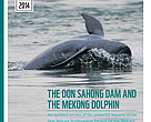 The Don Sahong dam and the Mekong dolphin