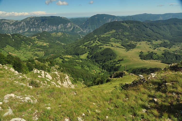 Nature Conservation and Spatial Planning: Working Hand-in-Hand for a Greener Infrastructure in the Carpathians