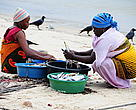 Women on Mafia Island prepare fish caught along the Mafia Coastline in Tanzania for selling.  The Rumaki Seascape programme has helped empower communities in Kilwa, Rufiji and Mafia to participate in the management of their marine resources and protect threatened habitats and species.