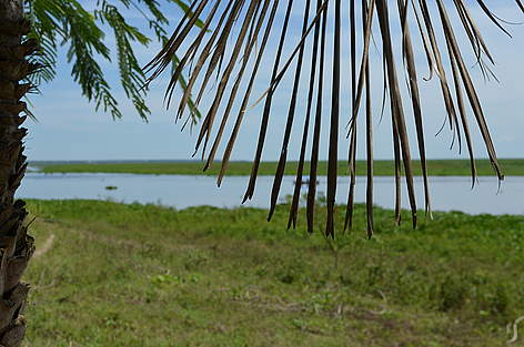 Pantanal, seen from Puerto Quijarro, border with Brazil rel=
