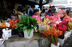 Flower shop in the town of Suva city.