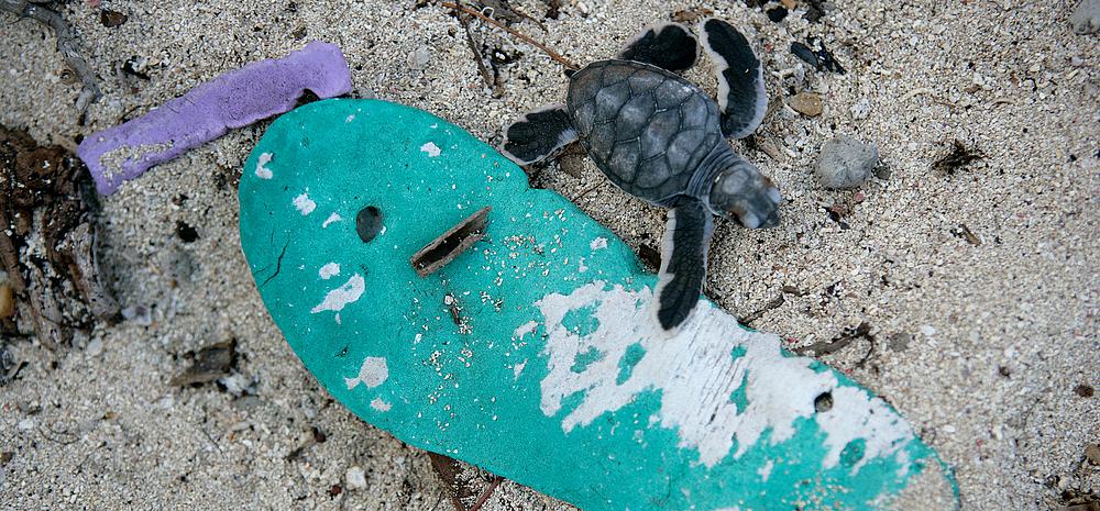 Beat Plastic Pollution UNenvironment