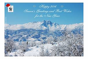 Seasons greeting and best wishes for the new year wwf merry christmas and happy new year 2016 m4hsunfo