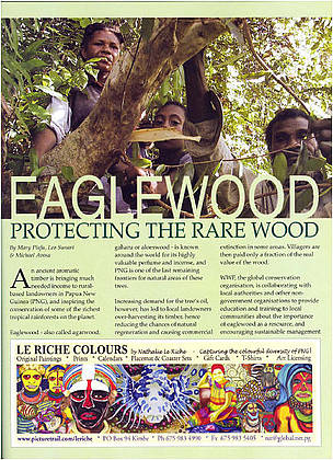 Eaglewood: Protecting the rare wood