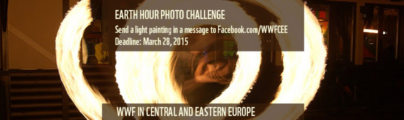 Earth Hour light photo challenge, WWF CEE / ©: WWF/Ekaterina Kurakina