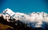 Mount Pandim (6691 mts) with pine covered hills in the foreground, Kanchenjunga National Park, Sikkim, India.