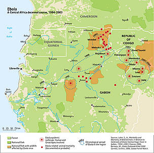 The spread of ebola across Central Africa, 1994-2003. Ebola epidemic outbreaks across the Congo ... / ©: UNEP/GRID-Arendal. Sources: Lahm, S., A., Morbidity and Mortality of Wild Animals in Relation to Outbreaks of Ebola Haemorrhagic Fever in Gabon, 1994—2003, Elsevier, 2006; Bermejo, M., Ebola Outbreak Killed 5000 Gorillas, Science, 2006; Global Forest Watch.