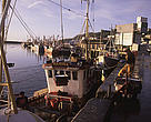 Newlyn commercial port for UK fishing boats