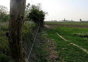 Electric fence at border of Katarniyaghat Wildife Reserve of India