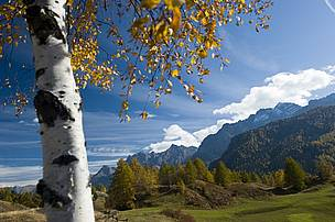 Emerald environment, Ardez, Graubuenden Canton The Emerald network is an ecological network to conserve wild flora and fauna and their natural habitats of Europe, which was launched in 1998 by the Council of Europe as part of its work under the Convention on the Conservation of European Wildlife and Natural Habitats or Bern Convention that came into force on June 1, 1982. It is to be set up in each Contracting Party or observer state to the Convention.