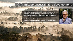 Sir David Attemborough on saving Borneo