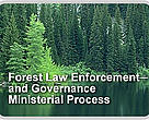 Forest Law Enforcement and Governance Ministerial Process