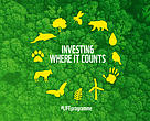 Investing where it counts: LIFE programme