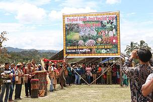 Tropical Forest Fruit Festival 2015, Cristina Eghenter, Irau Bua' Rayeh, Heart of Borneo, HoB, WWF Indonesia, Krayan, North Kalimantan, Borneo
