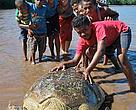 Dau Ni Vonu, 18, is the youngest turtle monitor in Fiji.
