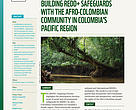A Bottom-Up Approach to Building REDD+ Safeguards with the Afro-Colombian Community in Colombia's Pacific Region