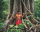 Yanomami hunting in the Amazon rainforest. Roraima Province, Brazil.