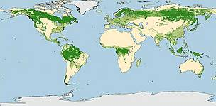G200 Forest Map / ©: WWF
