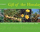 Gift of the Himalayas - high value plants and NTFPs - Report
