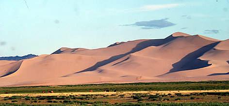 Gobi Desert | WWF