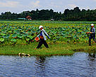 Across the Greater Mekong region people utilise healthy wetlands and rivers for fish and other aquatic resources.