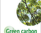 Green carbon guidebook