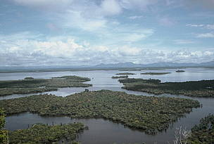 Danau (Lake) Sentarum, wetland in Indonesia, Asia.  	© WWF / Jikkie JONKMAN