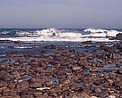 Rocky shore coastline Cape of Good Hope, Republic of South Africa