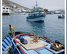 Guidelines for Developing Fishery Improvement Projects