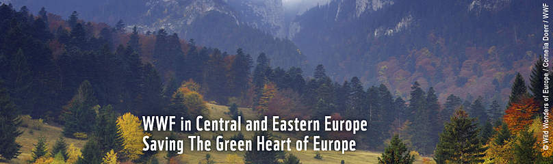 WWF CEE header, mountains, Carpathians / ©: WWF DCP