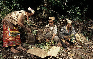 indonesian peoples and histories pdf